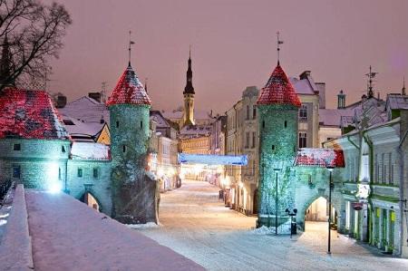 مهاجرت کاری به استونی