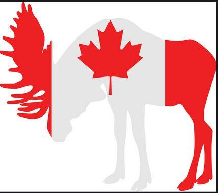 پذیرش تحصیل در دبیرستان کانادا