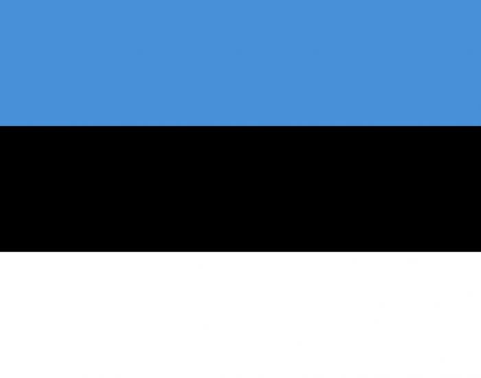 تحصیل رشتههای علوم انسانی در استونی